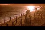 Anjos se reúnem para acompanhar o pôr do sol