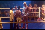 Astro de luta livre